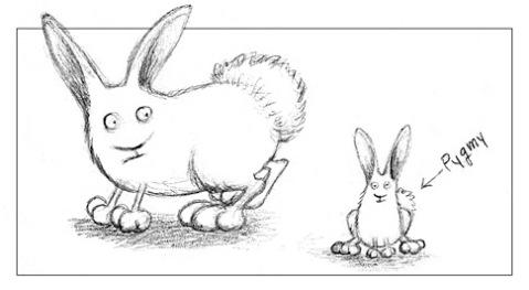 pygmy-bunny.jpg