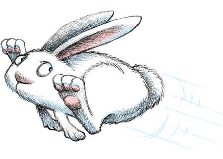 bunnyrun_clr2.jpg
