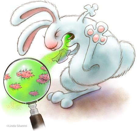 easter bunny cartoon drawing. Tags: unny, cartoon