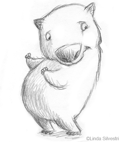 Wombat Drawing Wombat Drawing