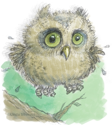 owl babies creative writing