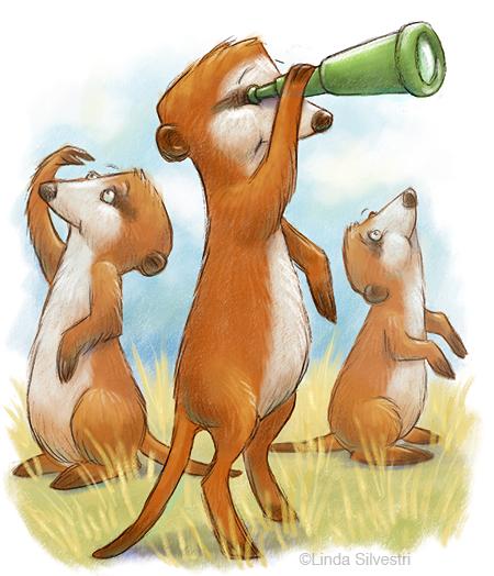 meerkat searching 450