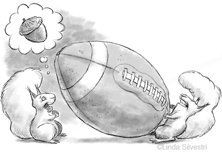 squirrel-football-4501