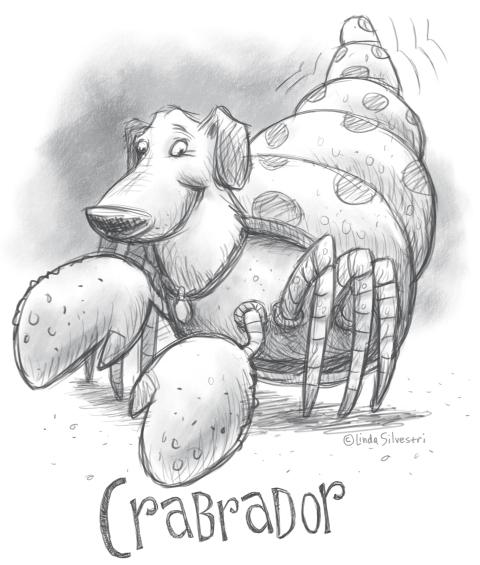 Crabrador SkADaMo