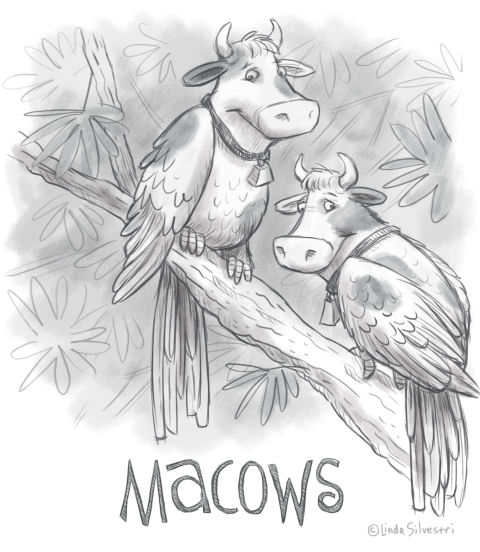 Macows