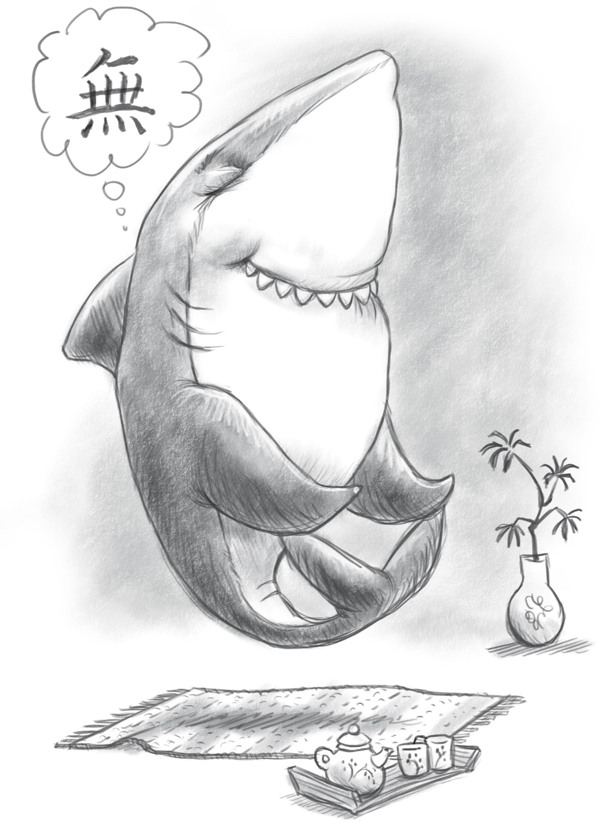 zen shark2